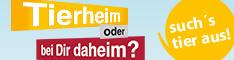 TASSO_shelta_frau_kaetzchen_468x60.jpg