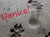 Fuß- und Pfotenabdrücke im Sand