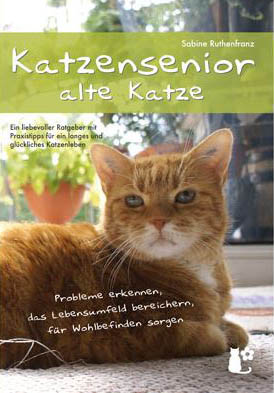 Katzen Tasso