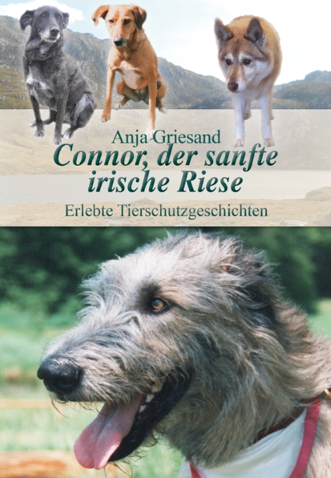 Cover Connor, der sanfte Riese